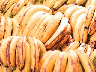 [写真]バランゴンバナナ