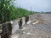 とりあえずサトウキビの侵入を食い止めたい壁の基礎(2012.2月)