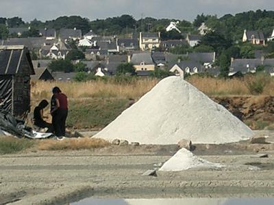 塩田の横に「ミュロン」と呼ばれる塩の山を作り、収穫した塩を集めます。