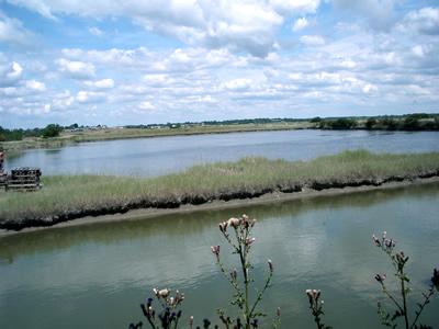 潮の満ち引きを利用し、入江からヴァジエール/コビエ(貯水池)に海水を取り入れます。