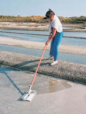 水面に最初に結晶する塩をルスと呼ばれる伝統的用具を使ってすくい上げます。