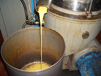 まだ黄色くにごりの濃い油